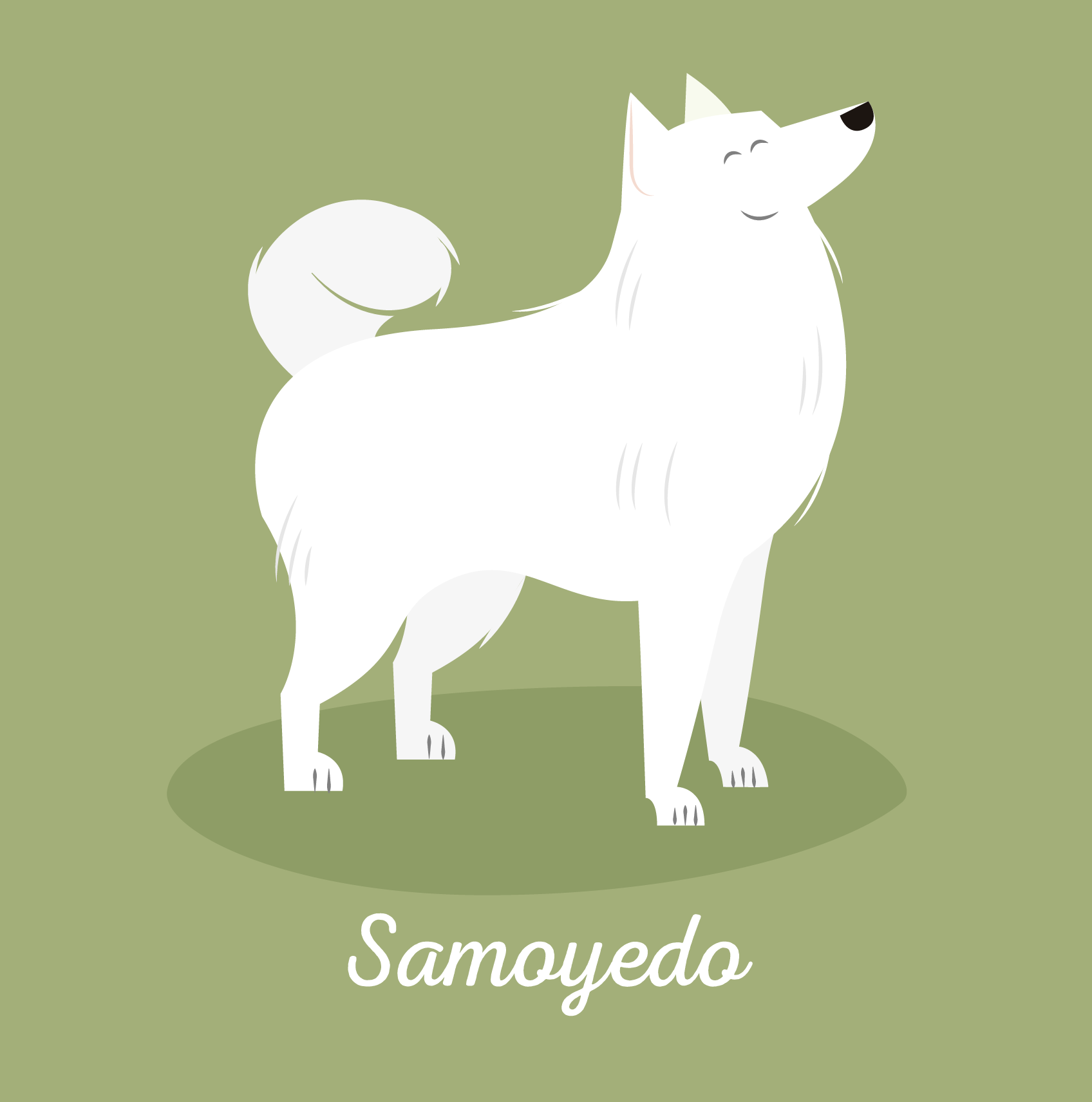Dog_illustrations_mio-01